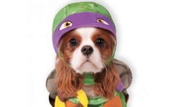 Ninja Turtles Donatello superhero dog costume, available on Baxterboo