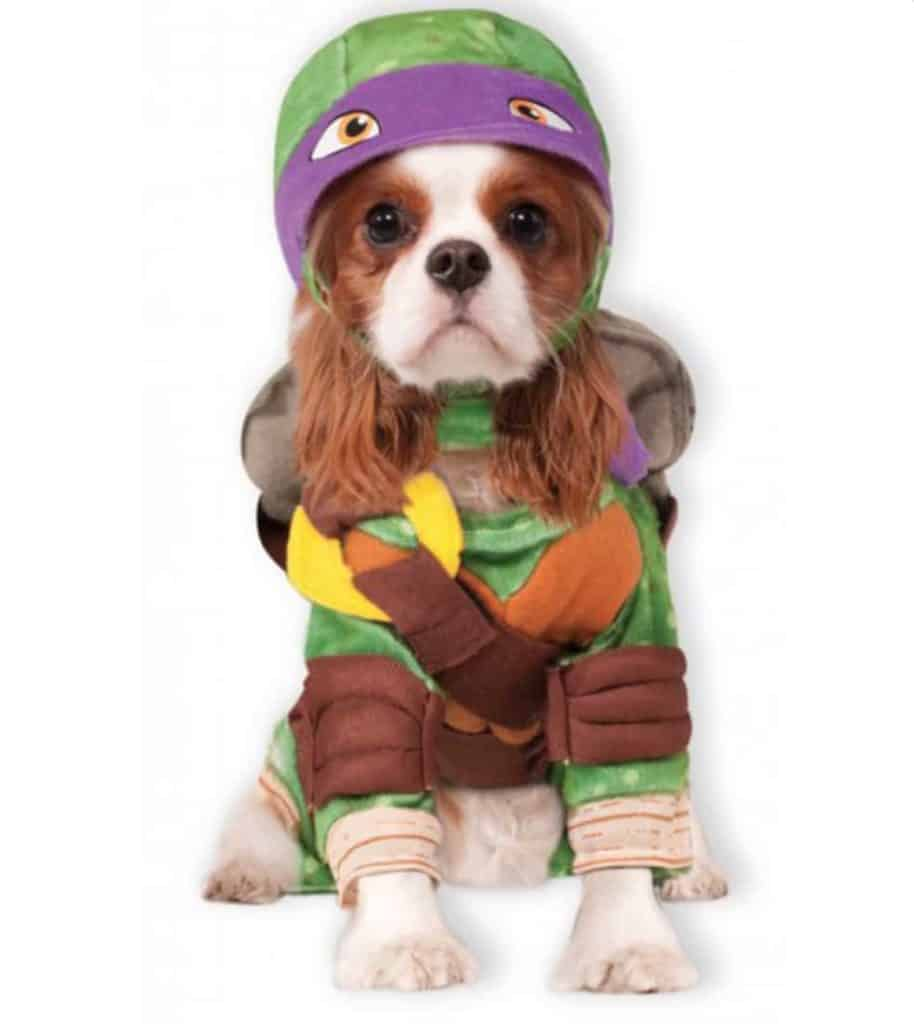 Ninja Turtles Donatello superhero dog costume, available on Baxterboo