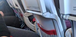 austrian airlines et les chiens en cabine ou soute
