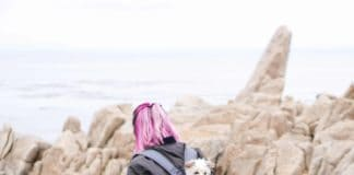 pink haired woman carrying a small dog in a dog backpack