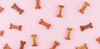 dog treats on pastel pink background