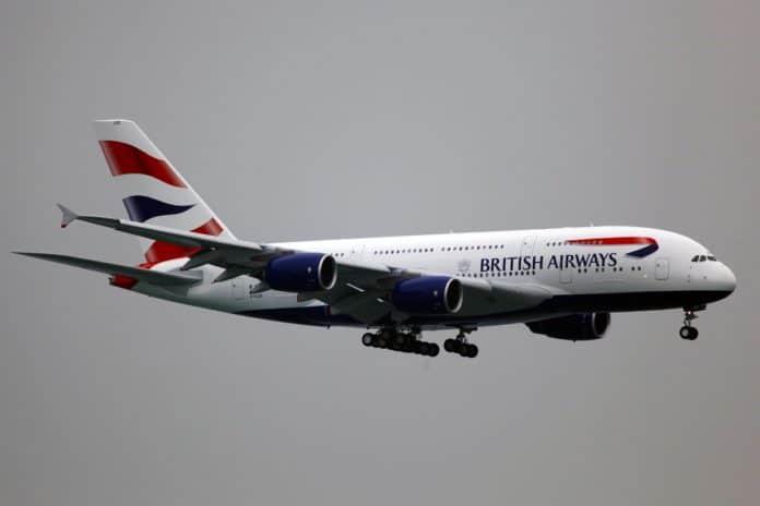 amener son chien dans un avion de British Airways