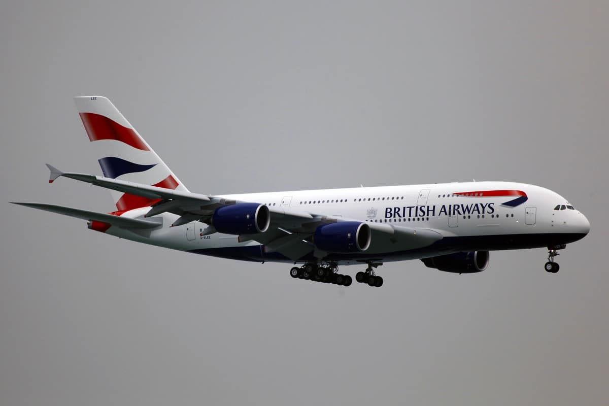 amener son chien dans un avion de British Airways