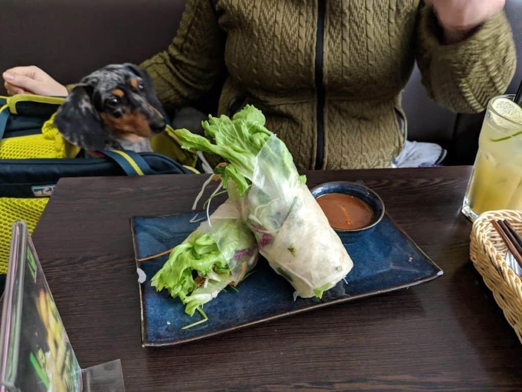 notre chien au restaurant à Berlin