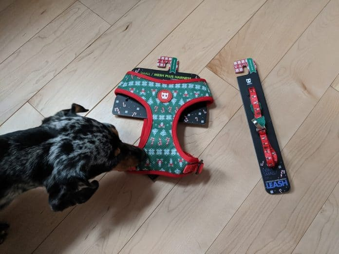 Rudolph Zeedog's harness and leash
