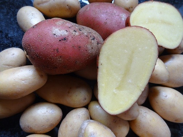 raw potato cut in half