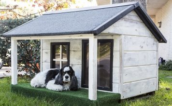diy dog houses